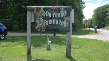Deyoung Family Zoo