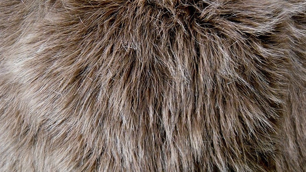 Faux fur Contains Animal Products