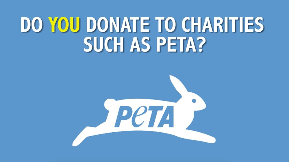 In 2015 the public handed PETA Deutschland €4,078,794 in donations and legacies.