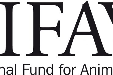 IFAW FINED DONOR FUNDS