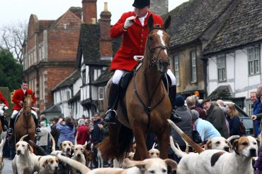 fox hunting get AR activists outraged