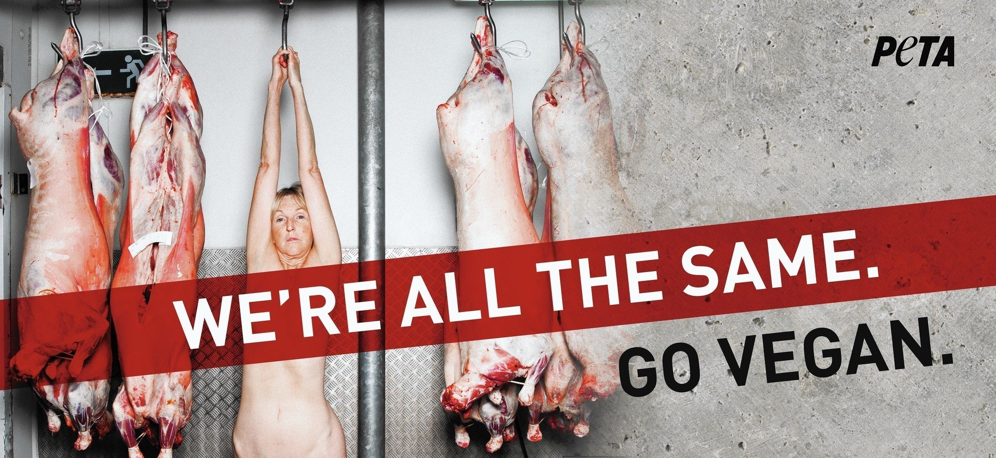 The naked truth – we've seen it all before PETA!