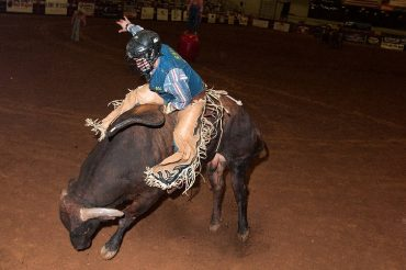 man riding bull at rodeo