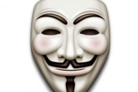 guy fawkes, animalrights activism, animal rights demonstrations