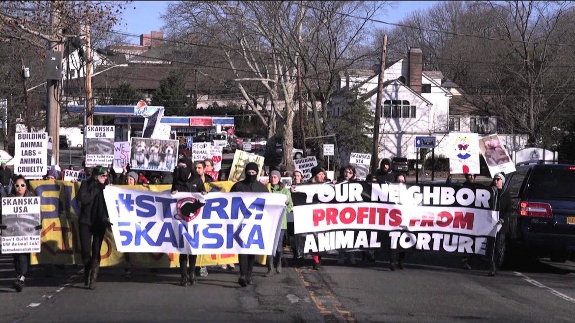 animal rights activists, animal welfare, real faces of animal rights