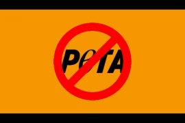 animal rights activists, PETA, PETA kills, banPETA, PETAtortures