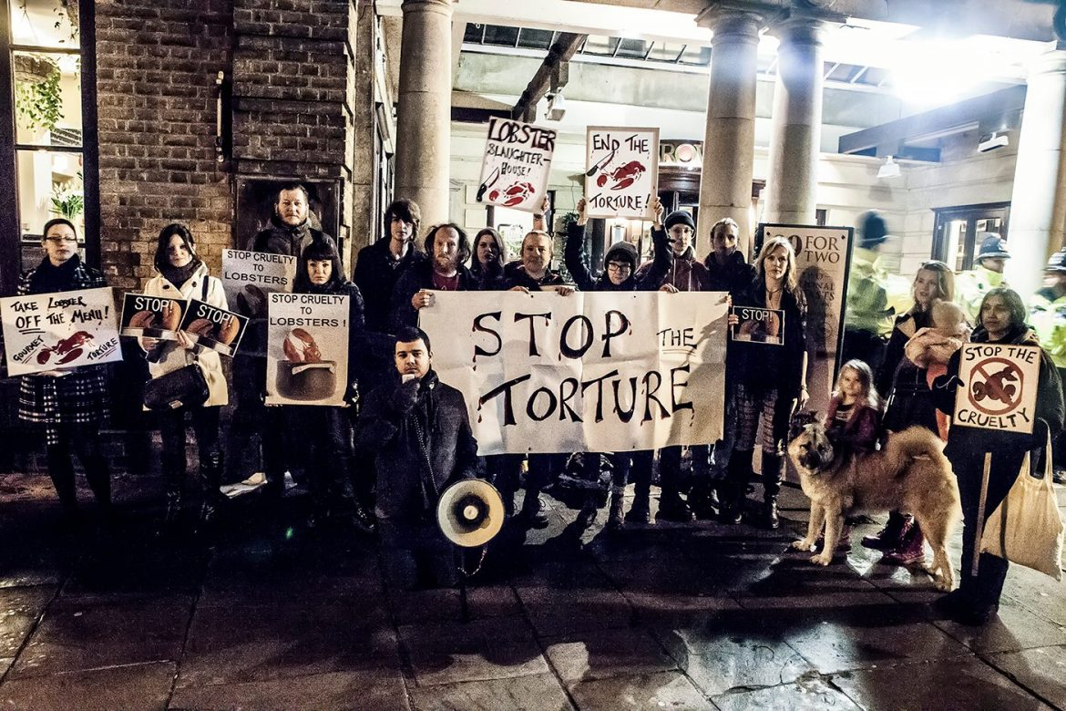 animal rights activists, animal rights demonstrations, animal welfare, real faces of animal rights , animal testing, protests