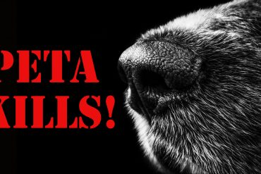 PETA, FARMERS, ANIMAL RIGHTS ACTIVISTS, ANIMAL RIGHTS DEMONSTRATIONS, PETAKILLS, REAL FACES OF ANIMAL RIGHTS