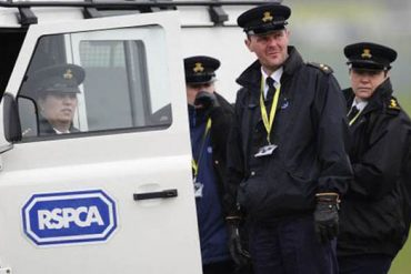 RSPCA, animal rights activists, animal rights demonstrations