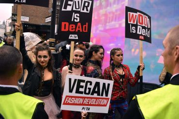 the freedom correspondent, animal rights activists, animal rights demonstrations, animal welfare , animal rights, activists, LFW, LFW2017