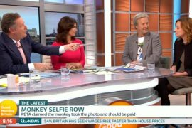 monkey selfie, naruto, piers morgan, photographer, PETA, real faces of animal rights, animal welfare