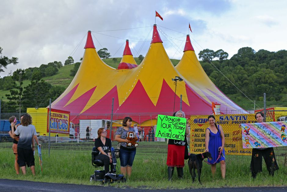 animal rights, animal rights activists, circus, demionstrations, welfare, misguided protest