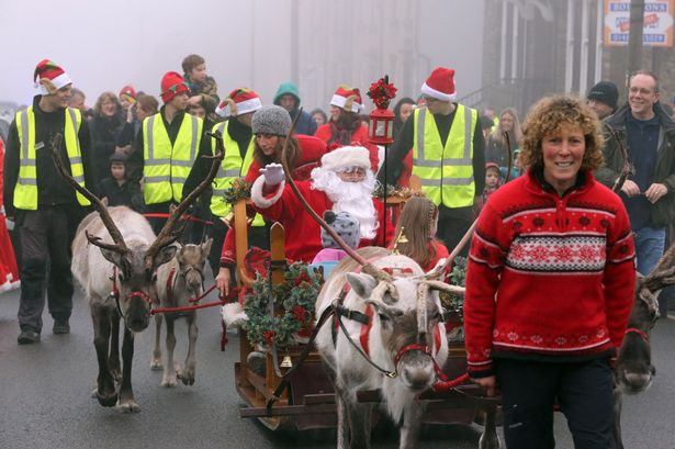 animal rights, animal welfare, reindeer parade, animals, animal rights, activists, scotland